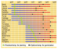 Best Time To Plant Veggies Smurf Pipe Innovativedistricts