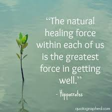 Hippocrates Quotes 47 Stunning 24 Best Health Quotes Images On Pinterest Health Quotes Words And