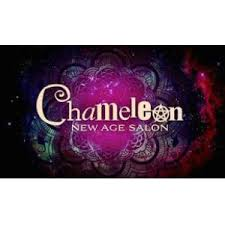 Image result for chameleon new age salon