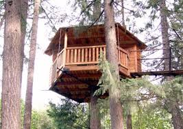 Adorable 10 Tree House Floor Plans For Adults Inspiration Design How To Build A Treehouse For Adults