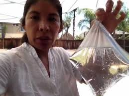 getting rid of outdoor flies you