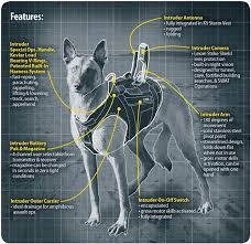 military german shepherd titanium teeth.  German Just As The Navy SEALS And Other Elite Special Forces Are Sharp Points  Of American Military Machine So Too Their Dogs At Top A Canine  Inside Military German Shepherd Titanium Teeth G