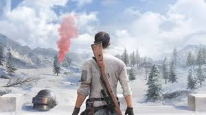 Download PUBG Winter, 2020, video game ...