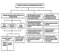 Менеджмент Зарубежный опыт информационного обеспечения управления  Разработка и проектирование информационного обеспечения управления требует установить состав и структуру информации для принятой технологии управления