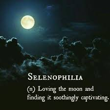 Beautiful Moonlight Quotes Best of Selenophilia Quotes And Thoughts Pinterest Thoughts
