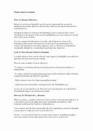 Career Focus Resume Example Lovely Best General Resume Objective