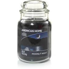 Yankee Candle Country Kitchen American Home By Yankee Candle Moonlit Night 19 Oz Large Jar