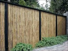 inexpensive fence styles. Remarkable Cheap Privacy Fence Ideas Unbelievable Backyard Wood Dream Fences . Inexpensive Styles
