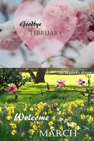 goodbye february hello march and spring pics 2017