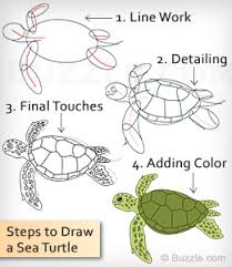 Small Picture Learn How to Draw a Sea Turtle Using These Easy Instructions Sea