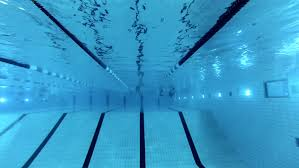 swimming pool and swimmer during the trainin