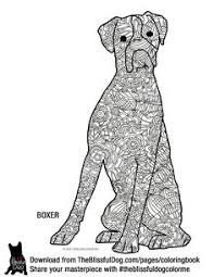 12 Best Coloring Pagesbooks Images Dog Coloring Page Coloring