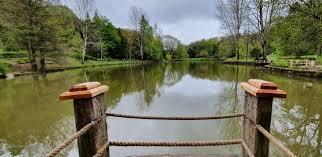 Belgrad Ormanı Atatürk Arboretumu Nerede - Nasıl Gidilir - Giriş Ücreti