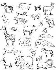 Stampa Disegno Di Animali Da Colorare