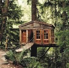 tree houses. Modren Tree Treehouses To Tree Houses