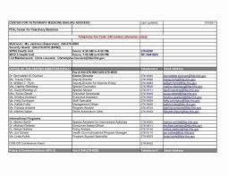 025 Probate Accounting Template Excel Ideas Excellent Chart