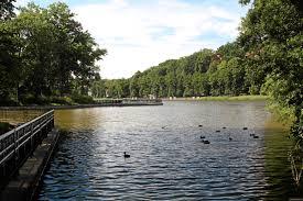 Картинки по запросу озеро тихое светлогорск