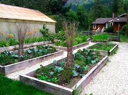 Small Picture Vegetable Garden Design Ideas Uk The Inspirations Pictures 2017