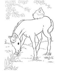 Small Picture print coloring pages free printable horse coloring pages are fun