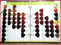One And Only Argan Oil Hair Color Chart Www