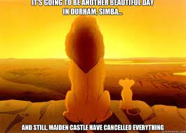 It's going to be another beautiful day in Durham, Simba... And ... via Relatably.com