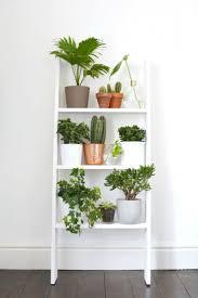 office planter boxes. Ergonomic Office Planter Boxes Nz Decorating With Plants Ideas: Large Size