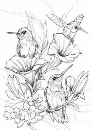 Hung Birds Coloring Page Printables Floral And Plant Life