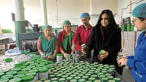 Mohali's home-grown entrepreneurs: Power of pickle ensures a spicy success  - punjab$chandigarh - Hindustan Times