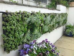 green everywhere diy vertical gardens homesthetics inspiring ideas for your home