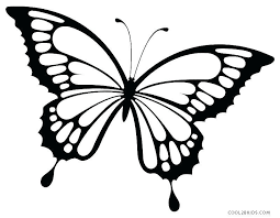 Free Printable Butterfly Coloring Pages Luxury Detailed Butterfly