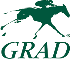Horse Speed Index Chart Horse Profile For Game Winner Equibase Is Your Official