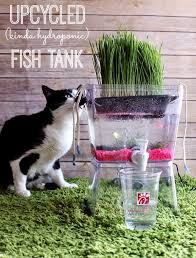 diy aquarium ideas upcycled fish tank cool and easy decorations for tank aquariums