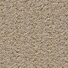 beige carpet texture. Beige Furry Carpet - 100% Zoom Texture C