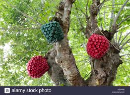 Christmas Decorations Made Out Of Plastic Bottles Christmas decorations made out of plastic bottles hang on tree 43