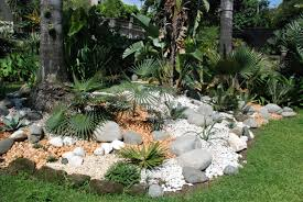 Amazing Beach Style With Palm Tree Tips to Build A Beautiful Rock Garden at  Home,