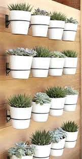 stylish wall mounted planter hanging plant holder create a whole succulent garden attaching to the mount outdoor indoor uk indium australium nz homebase