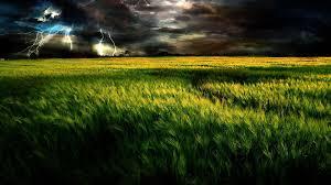 grass field background. Clouds Sky Nature New Green Field Grass Landscapes Cloudy Dark Fields Background Hd - 1920x1200