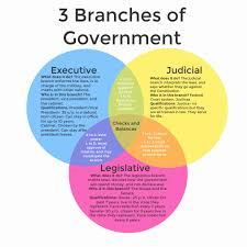 House Vs Senate Venn Diagram 3 Branches Of Government By Katie Williamson Infographic