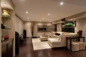 Multipurpose Basement contemporary-family-room