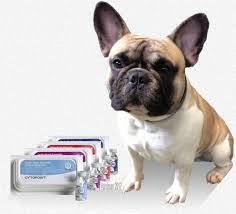 Cytopoint Injection Chart Cytopoint Versus Apoquel For Your Itchy Dog