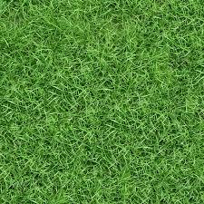 seamless grass texture game. Grass Textures 030 Seamless Texture Game E