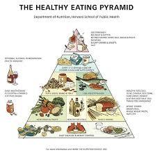 school lunch how healthy is it food pyramid 1992