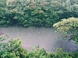 short essay on spring season for school students essaywritingart essay on rainy season in english for class 1 to class 10