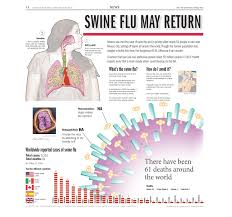 "design illustration esmeralda f ramirez swine flu infographic it won quite a few design awards but my personal best was earning second place across the united states in 2009 s ""design of the"