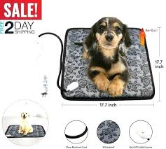 outdoor pet bed heated dog beds for large dogs