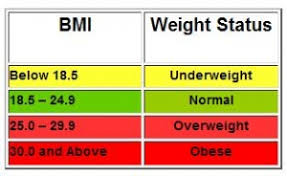 Bmi Categories What Is Your Bmi Abudo