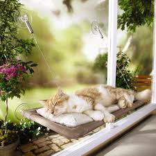 Großhandel Katze Hängematte Fenster Montiert Bett Sofa Mat Kissen