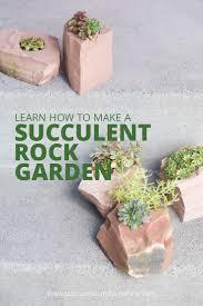 Indoor Rock Garden Best 25 Succulent Rock Garden Ideas Only On Pinterest