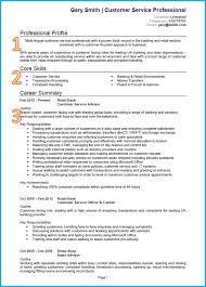 good cv template example of a good cv