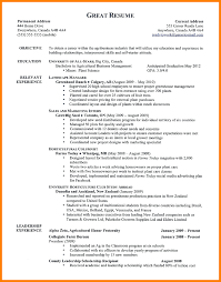 12 Good Examples Of Resumes Agile Resumed